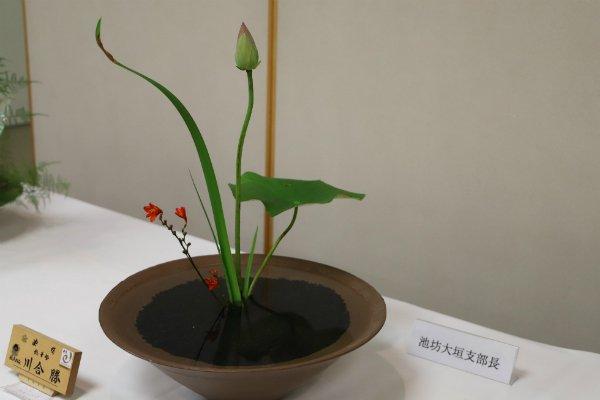 Til Ikebana-udstilling i Japan