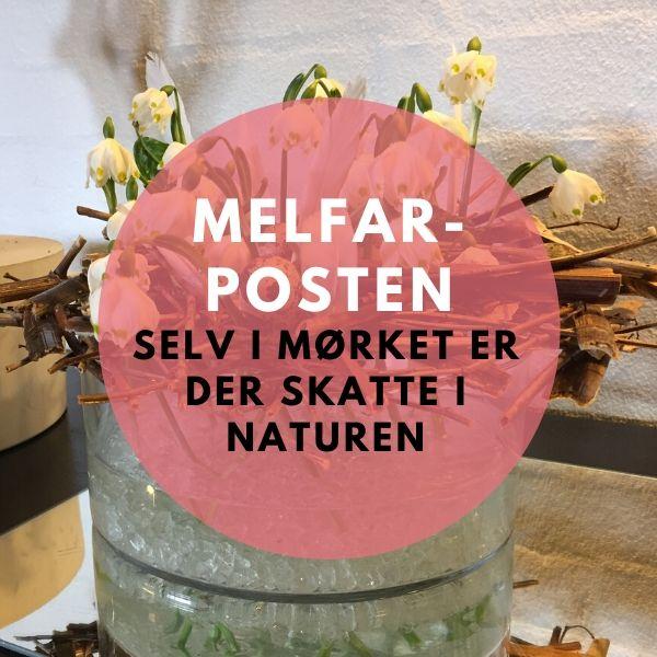 Limteknik i Melfar-Posten